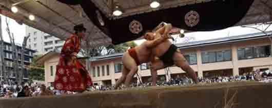 Как называется Главный судья во время поединка борцов сумо