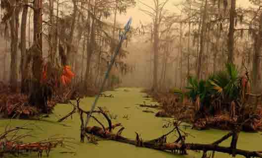 Копье, торчащее из болота