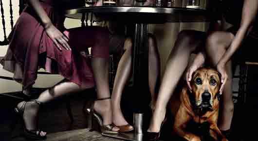 В каком спорте нельзя выдвигать ноги из-под стола