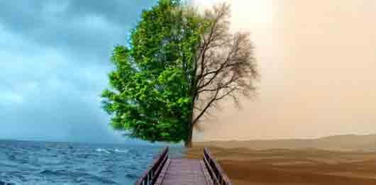 В каких «рамках приличия» должна себя держать погода