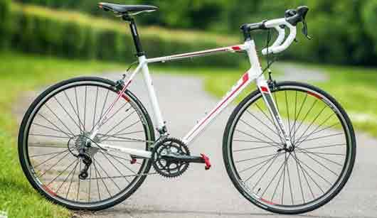 velosiped-s-gluxoi-peredachei