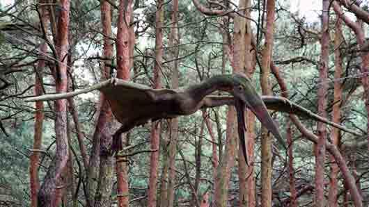 «Кровожадная птица» из «Парка юрского периода III»