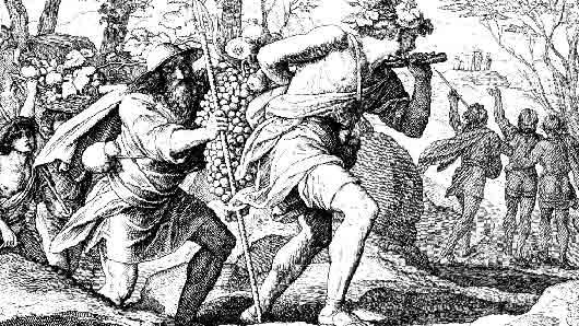 Из какой долины соглядатаи принесли библейскому Моисею кисть винограда