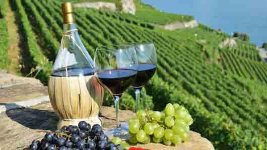 Итальянское вино в «соломенной бутылке»
