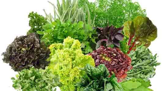 Лучший овощ, чтобы быстро освежить дыхание