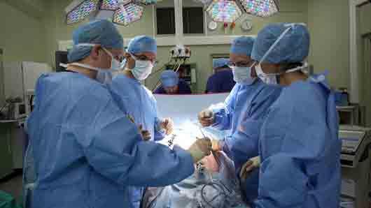 Насекомое, чьих личинок используют хирурги для удаления отмерших тканей