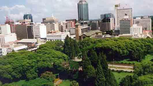 Священный зверь в Зимбабве