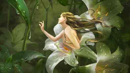 Какой цветок стал символом готовности жертвовать ради любимой