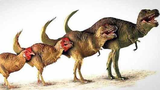 Первый шаг от мыши к динозавру