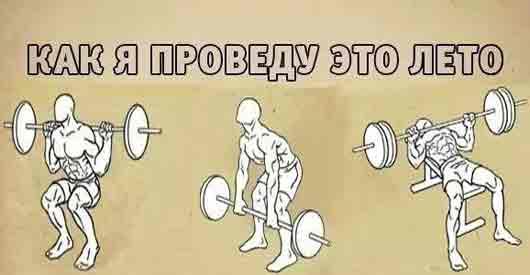 Строительство мышц