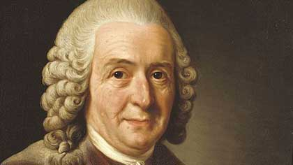 В 1720 году Карл Линней в г. Упсала создал цветочный ...