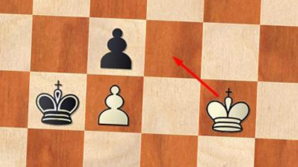 """""""Подстава"""" у шахматистов (8 букв)"""