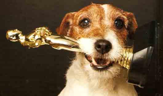 Как называется порода первой собаки, участвовавшей во вручении премии «Оскар»? Слово из 6 (шести) букв. Какой ответ?