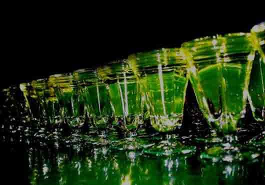 Зеленый ликер, особенно положительно влияющий на сексуальность