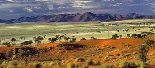 Африканская степь