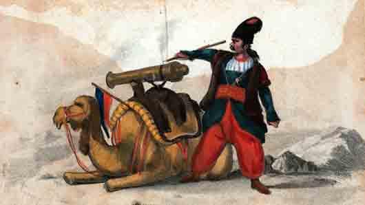 Пушка на спине боевого верблюда