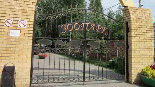 Площадка в зоопарке