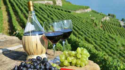 Лучшее красное вино к стейку по-флорентийски