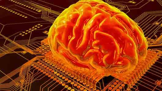 При какой степени усталости мозги уже не работают