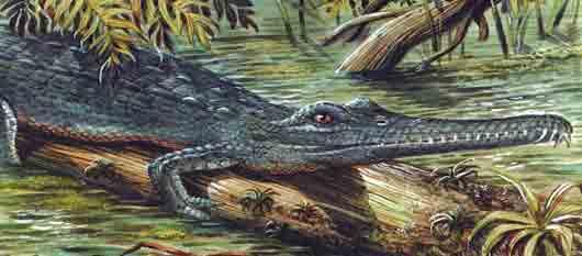 Ящер в предках современного крокодила