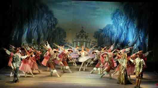 Какие цветы вдохновили русского композитора Петра Чайковского на написание сказочного балета «Спящая красавица»