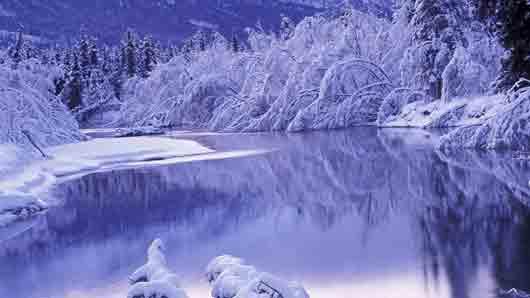 «Снежное покрывало» поэтическим языком