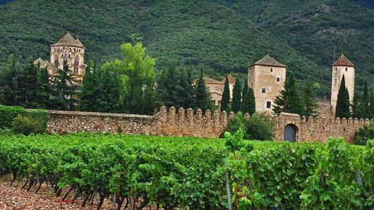 Монастырский виноградник у испанцев