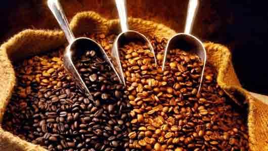 Кофейный алкалоид
