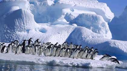Что произошло впервые в Антарктиде 29 января 2007 года