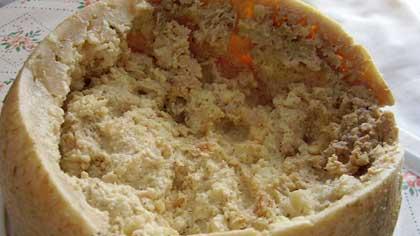 Что делают личинки мух, когда едят сыр Касу марцу