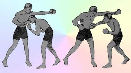 Финт боксера (5 букв)